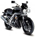Speed Triple 509/955i